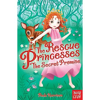 The Rescue Princesses: The Secret Promise (Paperback) by Harrison Paula Tancredi Sharon Artful Doodlers