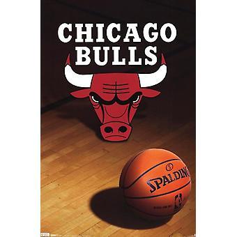 Chicago Bulls - Logo 2010 Poster Print