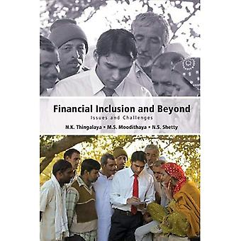 Financial Inclusion and Beyond