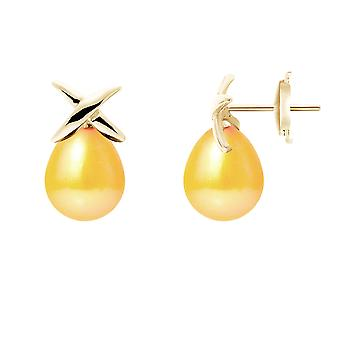 Earrings ears pearls of Culture gold and yellow gold 750/1000