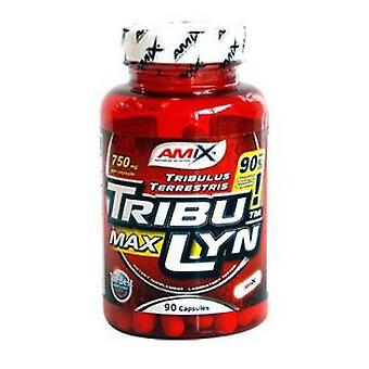 Amix Tribulyn 90% 90 Capsules (Dietetics and nutrition , Supplements , Body , Growth)
