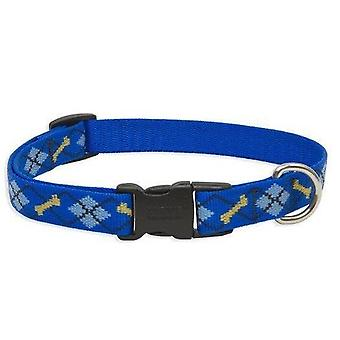 Lupin collier chien chat 1/2