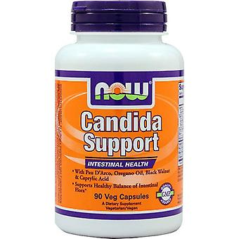 Now Candida Support 90 Capsules (Diät)