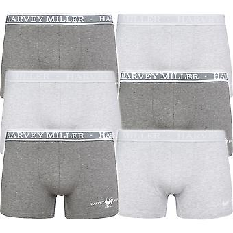 6 Pack Harvey Miller Polo Club shorts men's Boxer shorts grey