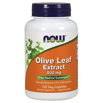 Now Foods Olive Leaf Extract 500Mg 120 Veggie Capsules