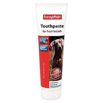 犬・猫、肝風味抗プラークのすべてのサイズの Beaphar 歯磨き粉
