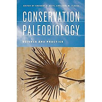 Erhaltung Paläobiologie
