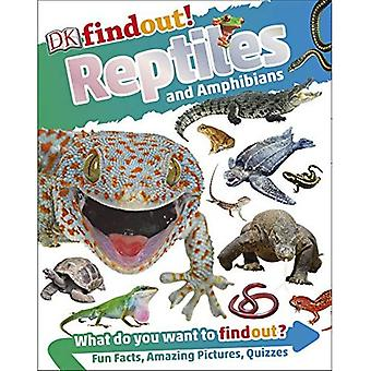 Reptiles and Amphibians - DKfindout!