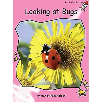 Looking at Bugs: Pre-reading (Red Rocket Readers: Non-fiction Set B)