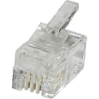 econ connect MPL44R, Pin RJ10 Plug, straight Clear