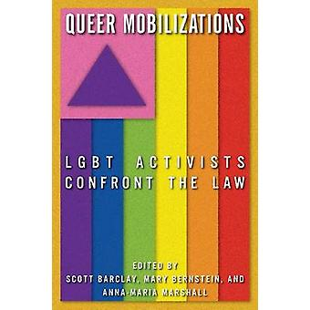 Queer Mobilizations - LGBT Activists Confront the Law by Mary Bernstei