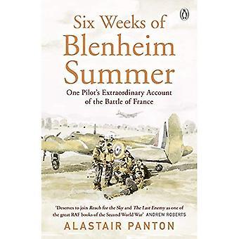 Six Weeks of Blenheim Summer