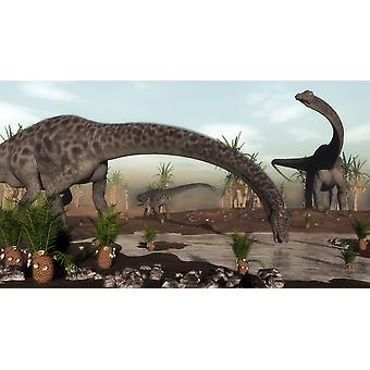 Diplodocus dinosaurs grazing near a desert lake with williamsonia trees and cycadeoidea plants Poster Print