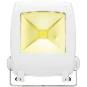 LED outdoor floodlight 10 W Cold white Renkforce