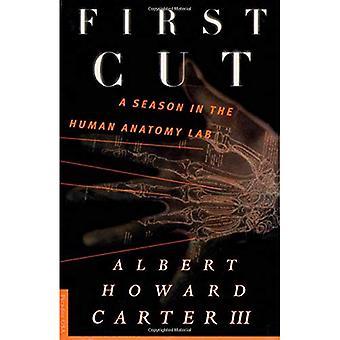First Cut : A Season in the Human Anatomy Lab