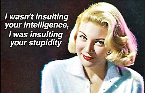 I Wasn't Insulting Your Intelligence... funny fridge magnet (ep ls)