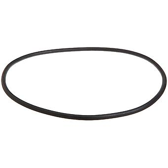 Pentair Sta-Rite 35505-0421 O-Ring for Cast Iron Suction Trap Assembly