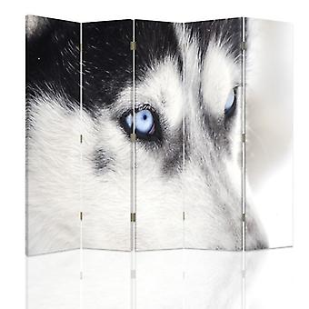 Room Divider, 5 Panels, Double-Sided, Rotatable 360, Canvas, Siberian Husky 2