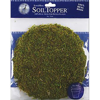 Moss Pot Toppers 8