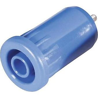 Safety jack socket Socket, vertical vertical Pin diameter: 4 mm Blue Schnepp BU 4800 bl 1 pc(s)