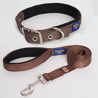 Ginger Ted High Quality Padded Strong Nylon Dog Collar & Lead Value Pack Brown (3 sizes)