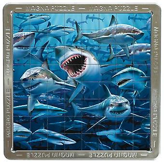 Aeme Games Puzzle 3D Mega Magna - Sharks (Toys , Boardgames , Puzzles)