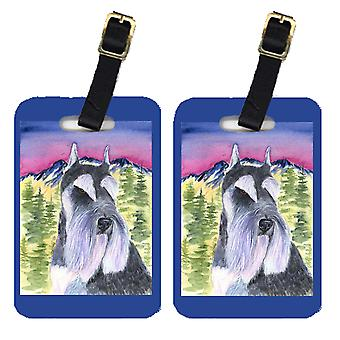 Carolines Treasures  SS8340BT Pair of 2 Schnauzer Luggage Tags