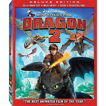 How to Train Your Dragon 2 [BLU-RAY] USA import