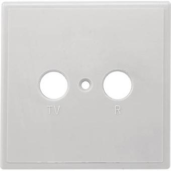 Axing TZU 2 Antenna socket cover TV, FM Surface-mount