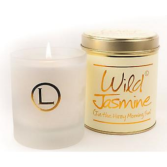 Lily Flame Scented Glassware Candle - Wild Jasmine