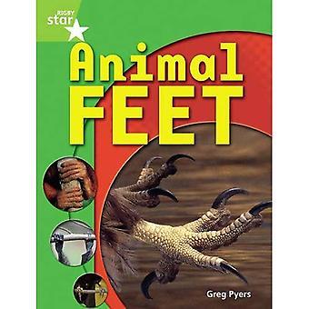 Animal Feet: Green Level (Rigby Star Guided)
