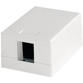 Network outlet Surface-mount Unequipped 1 port Telegaertner Alpine white