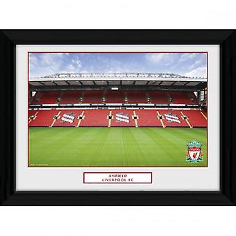 Liverpool Picture Anfield 16 x 12