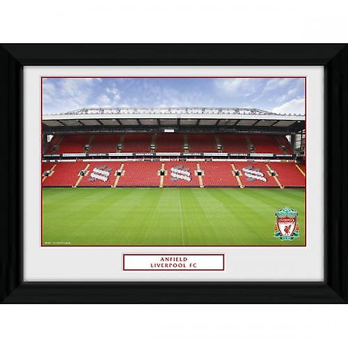 Liverpool Anfield Photo 16 x 12