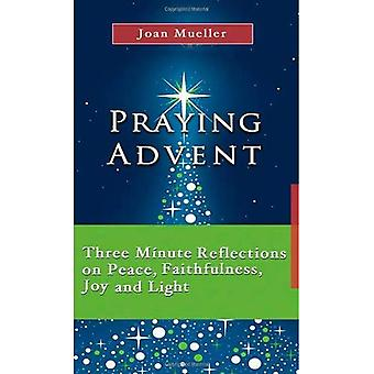 Praying Advent: Three Minute Reflections on Peace, Faithfulness Joy and Light (7x4: a Meditation a Day for a Month)
