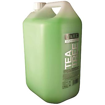 Wahl koncentreret Tea Tree Shampoo 5ltr