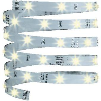 LED strip + plug 12 V 300 cm Warm white Paulmann YourLED Eco 70254