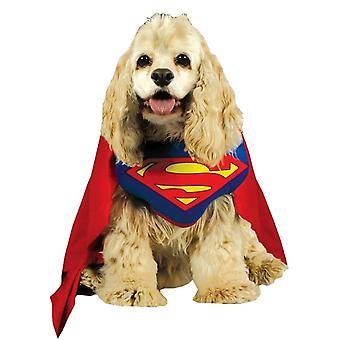 Costume di Superman di cane