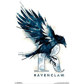 Harry Potter - Ravenclaw illustrerade affisch Skriv