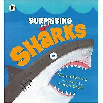 Surprenant de requins