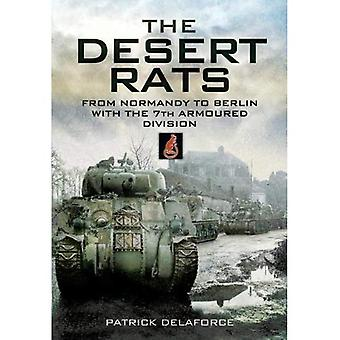 Churchill's Desert Rats in North-west Europe