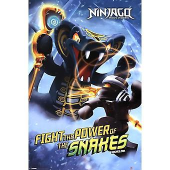LEGO - Ninjago - alimentación de serpientes cartel Poster Print