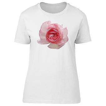 White Pastel Petals Tee Women's -Image by Shutterstock