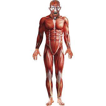 Anatomía hombre traje, pecho 38
