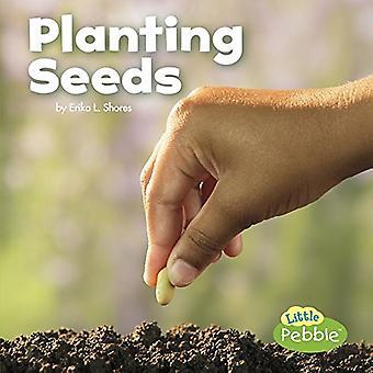Sadzenia nasion (świętować wiosnę)