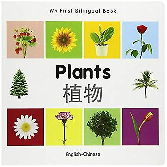 My First Bilingual Book - Plants - English-chinese