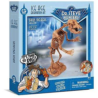 Geoworld Ice Age excav. Kit-cave bear Skeleton