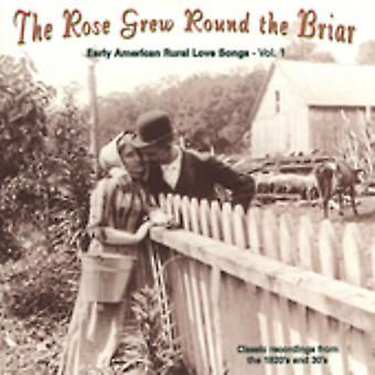 Rose Grew omkring Briar - steg voksede omkring the Briar: Vol. 1-Rose voksede omkring Br [CD] USA importen