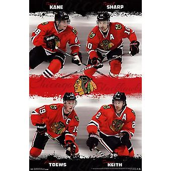 Chicago Blackhawks - Team 2013 Plakat Poster Print