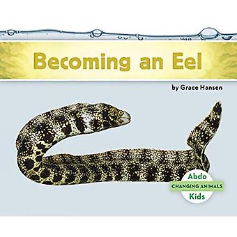 Becoming an Eel (Changing Animals)